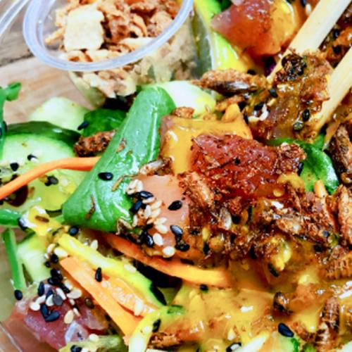 Sushi Train Abokado Now Offering Crickets In Your Poke Bowl