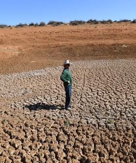 Scammers Target Drought-Affected Farmers