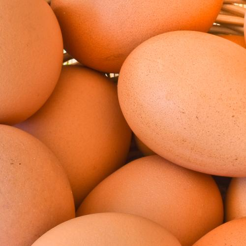 Man Hospitalized After Stuffing How Many Eggs Up His Bum?