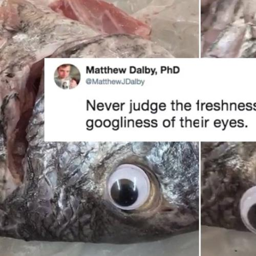 Fishmonger Puts Googly Eyes On Fish To Make Them Look Fresh