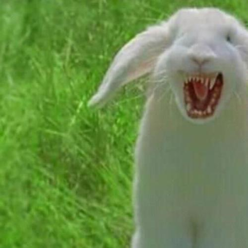 Meet The Cute Vegan Bunny That Is Actually A CANNIBAL!