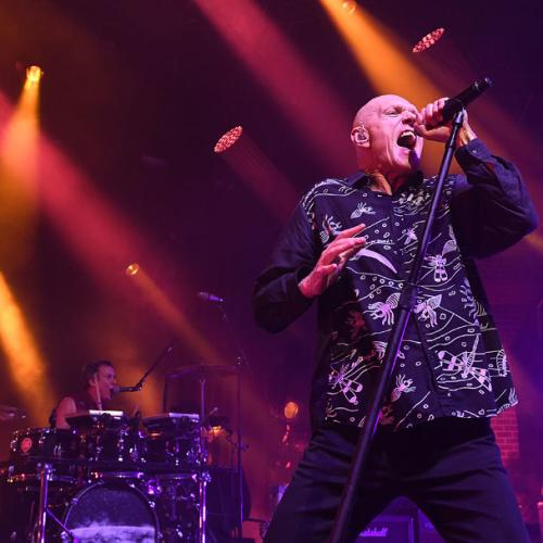 Midnight Oil Announce New Shows For 2019