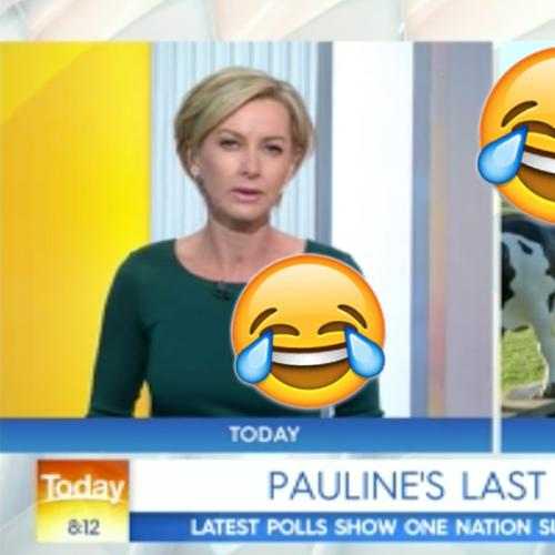 Pauline Hanson Fires Up At Deb Knight Over Todays Ratings