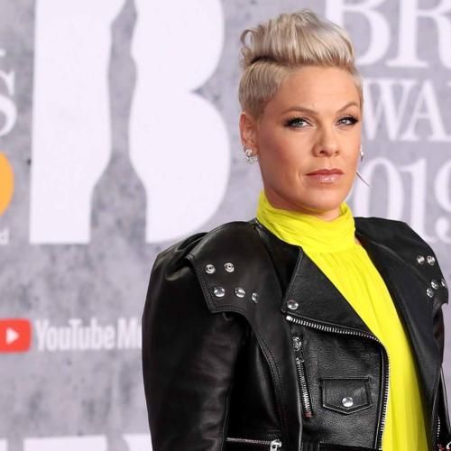Pink's Epic Clapback At 'Confused' Troll