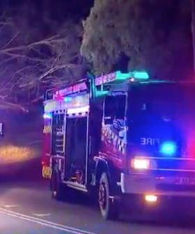 Tree Falls On Car In Blue Mountains Leaving One Dead