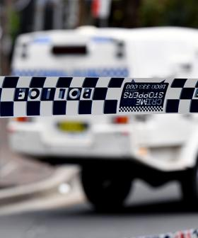 Family Dog Mauls Toddler In Sydney Home