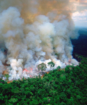 #PrayForAmazonia: Celebrities Bring Attention To Brazil Wildfires