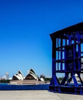 'Crate Man' Becomes Viral Internet Sensation After Sydney Stabbing Heroics