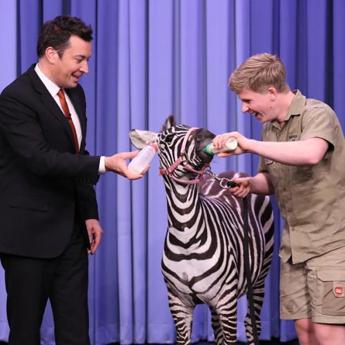 PETA Investigating 'Cruel' TV Segment Involving Robert Irwin