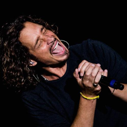 Here's Who's Playing Chris Cornell In Brad Pitt's Upcoming Documentary