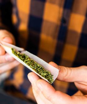 """""""This Is A Really Dumb Idea"""": ACT's Legal Cannabis Fans Federal Flames"""