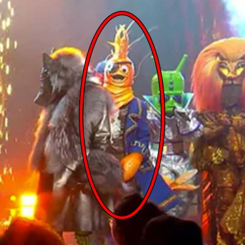 Is Amanda Keller Under The Prawn Mask In 'The Masked Singer'?