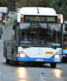 Sydney Buses 'Franchised' Not Privatised