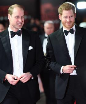 Harry's Documentary-Maker Offers Bombshell Insight Into His Relationship With William