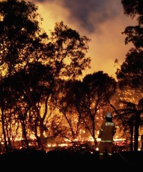 NSW Blaze That Destroyed Up To 30 Homes May Have Been Deliberately Lit