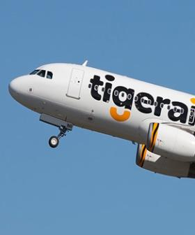 Budget Airline Tigerair Officially Shuts Down After 13 Years