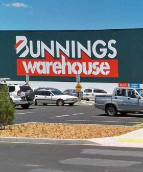 There's A New Way to Shop at Bunnings Online!