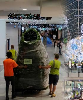 Shoppers Outraged With Early Christmas Decorations In Sydney Shopping Centre