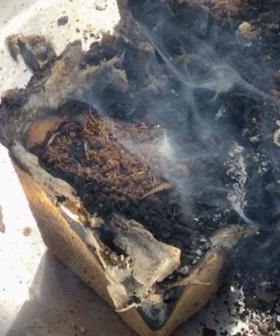 "Woolworths Discovery Garden ""Spontaneously Combusts"""