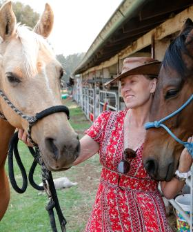 'Move Horses To Paddocks' Amid Fire Threat