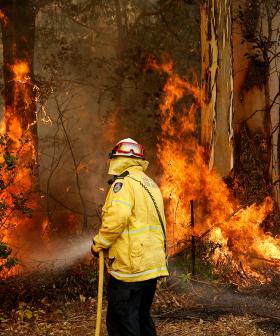 Fourth Person Found Dead In NSW Bushfires