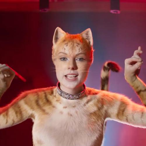 We Officially Have A New Trailer For Cats To Keep Us Purring
