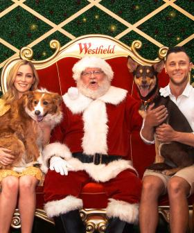 Shopping Centre In Sydney's West Hosting Pet Santa Photos
