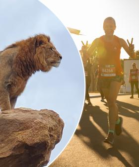 Explore The New Sydney Zoo in Western Sydney's Biggest Fun Run