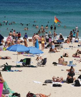 NSW Set To Swelter Today With Temperatures Forecast To Exceed 40C