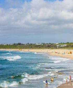 One Of Sydney's Most Loved Beaches Contaminated With A 'High Faecal Count' Thanks To Baby Wipes