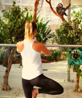 You Can Do Yoga Amongst The Koalas In Sydney To Raise Money For Injured Wildlife