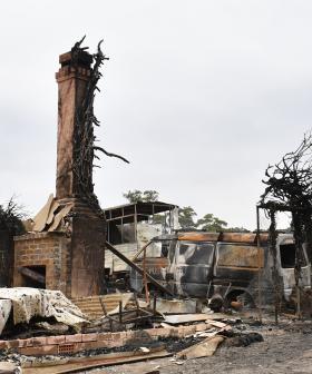 """It's Gonna Come Back"": Bushfire-Affected Wingello Residents Face Heartbreaking Reality"