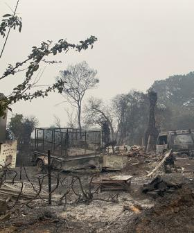 Homes Lost As NSW Fire Jumps Major River