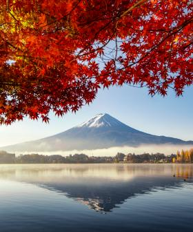 5 Amazing Things To Do In Japan