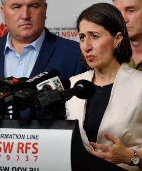 Fires, Koalas & Donations: Gladys Berejiklian Gives Update On NSW Bushfires
