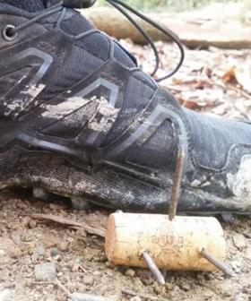 Dangerous Homemade Spikes Discovered On Popular NSW Running Trail