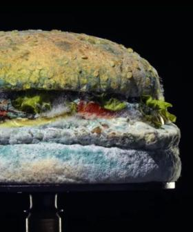 Why Burger King Is Using A 35-Day-Old Mouldy Whopper In Its New Ad