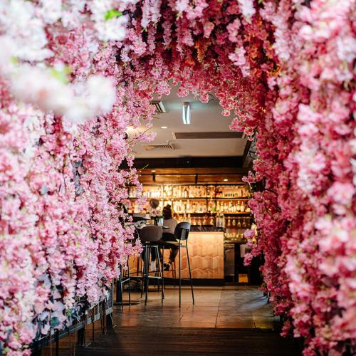 This Sydney Rooftop Bar Has Transformed Into An Insta-Perfect Cherry Blossom Wonderland