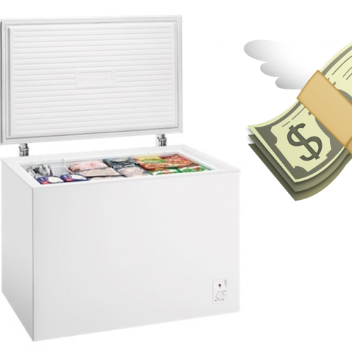It's Not Just Toilet Paper People Are After... Shoppers Are Now Desperate For Freezers