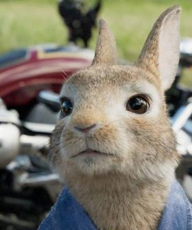 'Peter Rabbit 2' Release Date Pushed Back To September Amid Coronavirus Fears