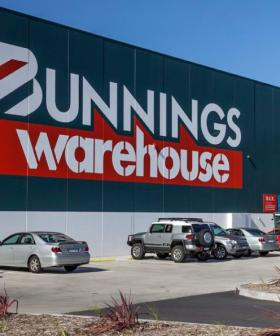 Bunnings Has Started Selling $200 Plants For Less Than $4