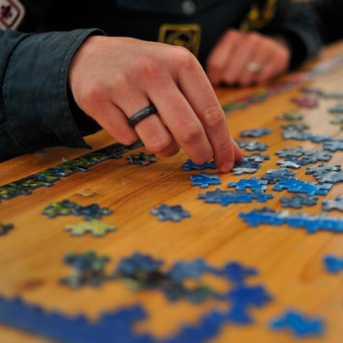 Jigsaw Puzzles Sales Skyrocket During COVID-19