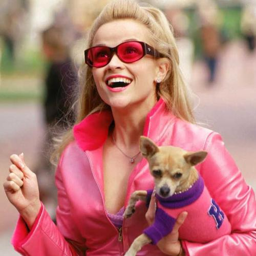 Reese Witherspoon Is Teaming Up With Mindy Kaling For Legally Blonde 3