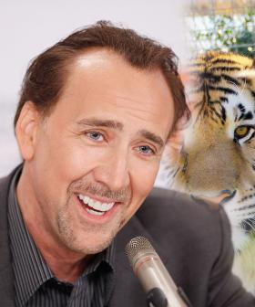 Nicolas Cage Has Been Cast As Joe Exotic In New Tiger King Series