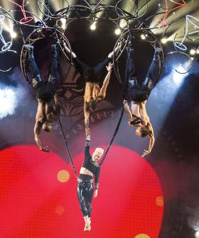 You Can Get A Private Aerial Acrobatics Lesson From The Queen Of Stunts Herself, P!nk!