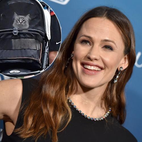 Jennifer Garner Has Been Snapped Walking Her Pet Cat In A Stroller
