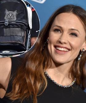 Jennifer Garner Has Been Snapped Walking Her Pet Cat In A Stroller