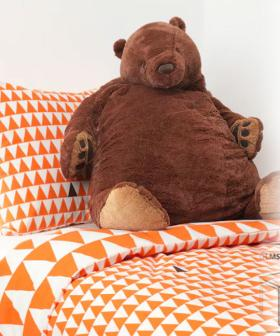 There Is A Very Cute $35 Ikea Toy Bear Called Djungelskog That Everyone Has Fallen For