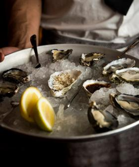 This Beach Club Is Offering $1 Oysters On Wednesdays For The Rest Of July