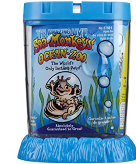 Need Some New Buddies? Kmart Is Now Selling Sea Monkeys!